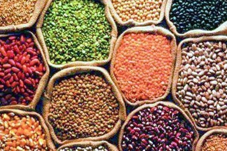 Agri ministry, ICAR to promote bio-fortified varieties cereals & pulses via revamped NFSM