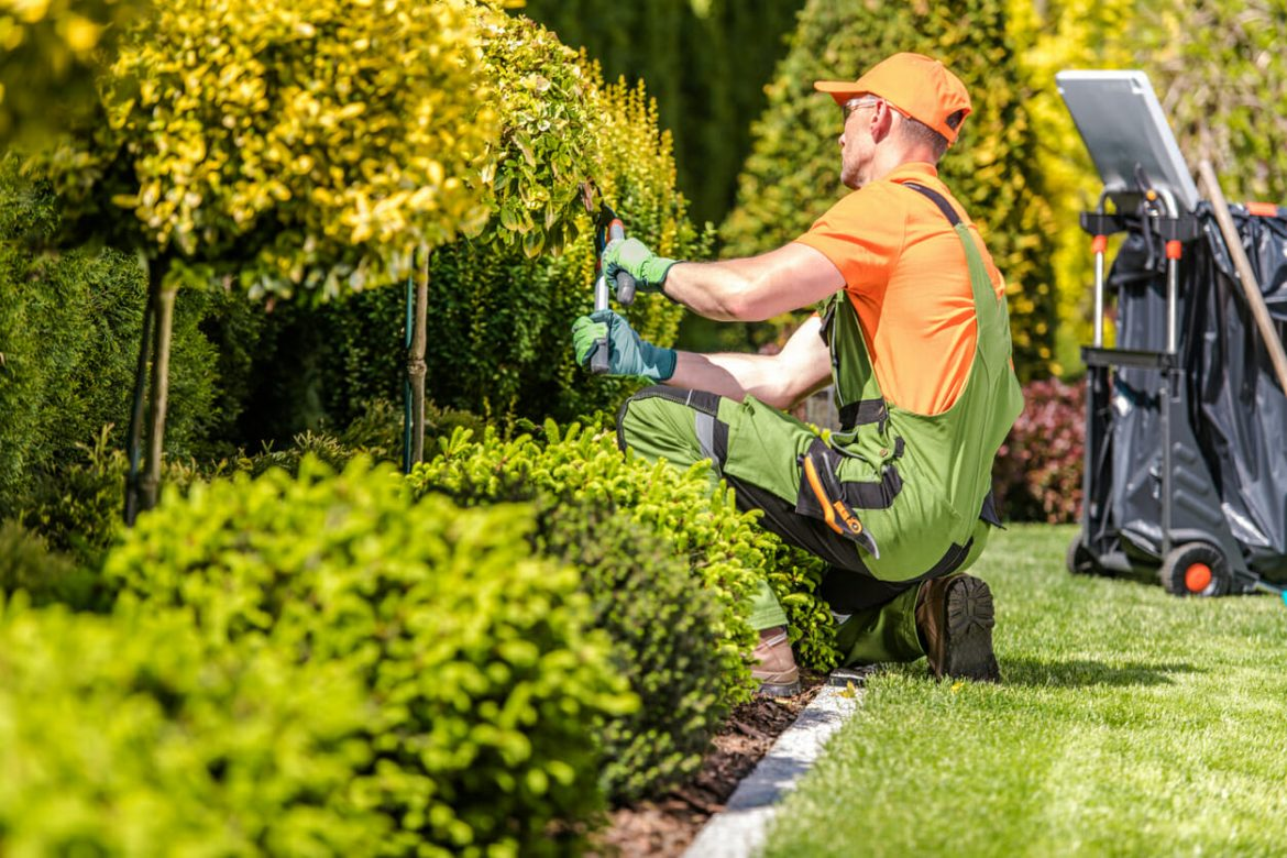 What Time Of The Year Is Perfect For Hiring Landscapers