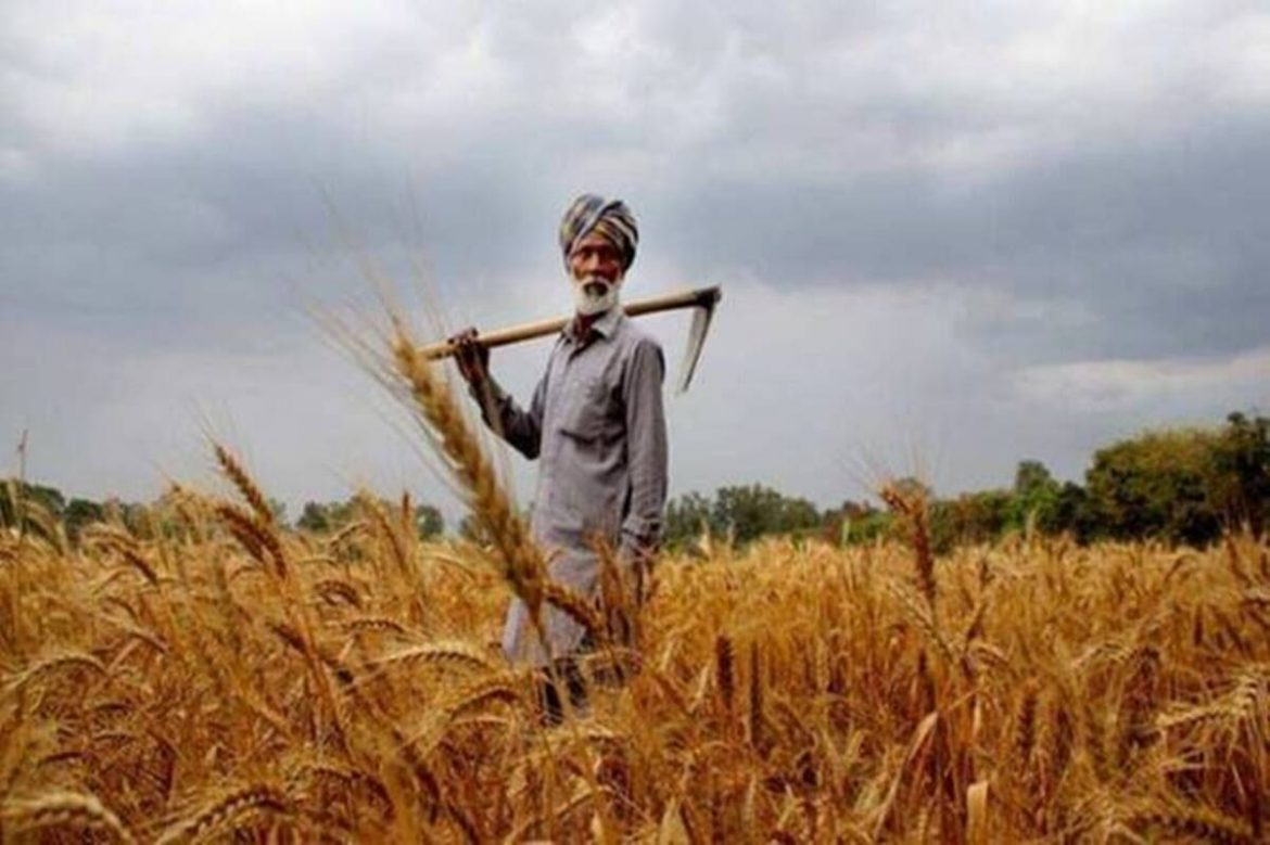 Crop Insurance: Centre open to 'Beed formula', writes to states
