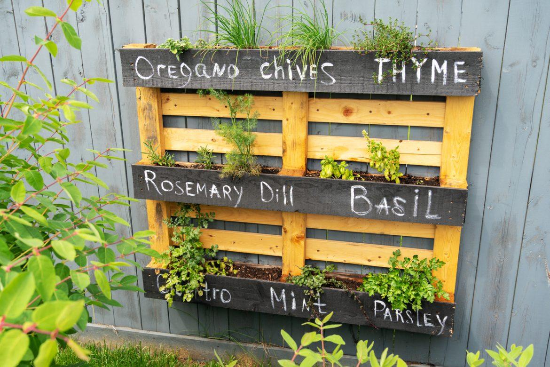 6 Fabulous Garden Makeover Ideas