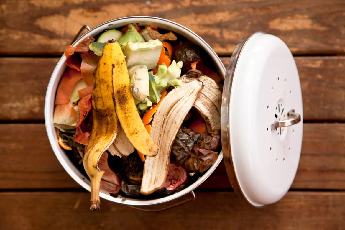 The Best Countertop Compost Bin for Most Home Cooks